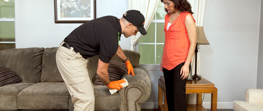 Bloomington, MN carpet upholstery cleaning