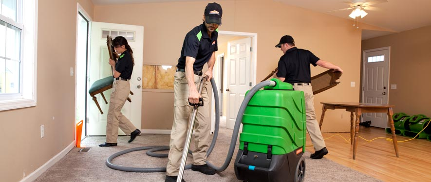 Bloomington, MN cleaning services